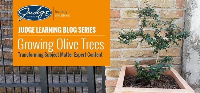 LearningBlog_OliveTree.jpg